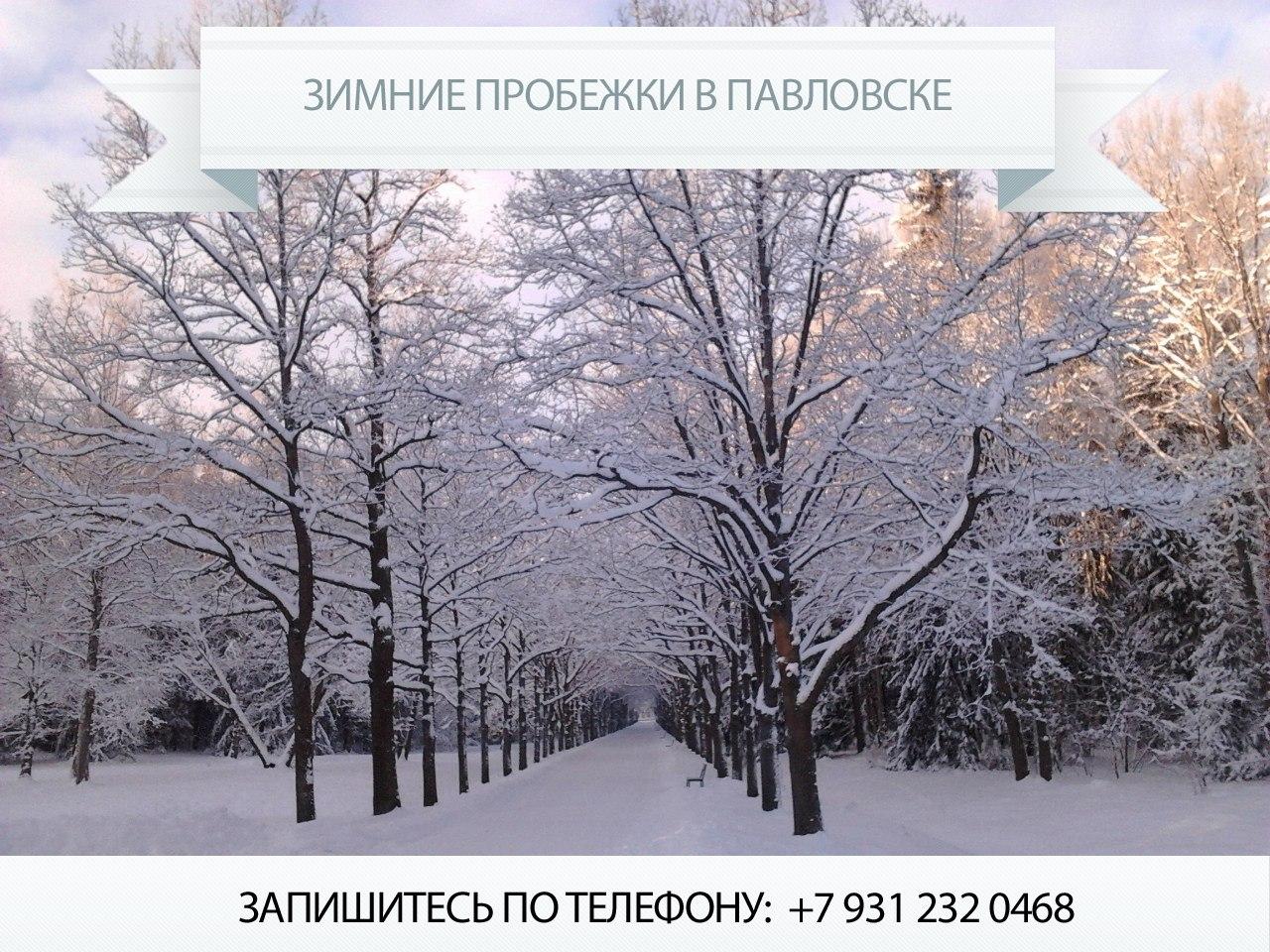 Зимние пробежки в Павловском парке.